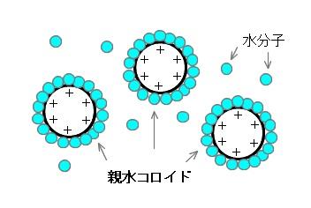 sinsuikorido001